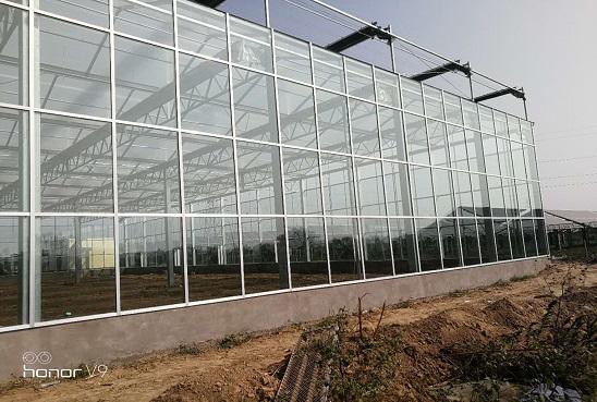 玻璃温室大棚的玻璃布置