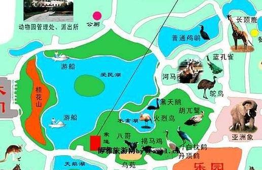 郑州市动物园今起恢复开园游客戴口罩、扫健康码