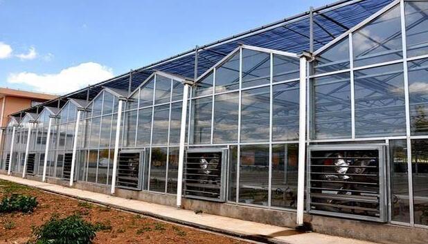 温室大棚在建设时需要注意3项性能和内部毒气体产生以及预防措施!