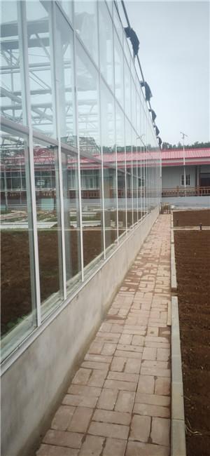 河南三门峡玻璃大棚项目