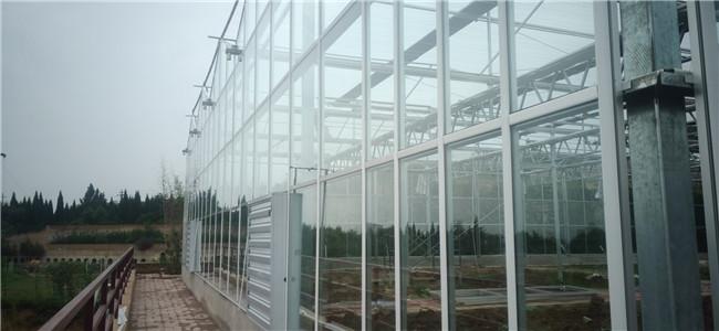河南玻璃大棚施工