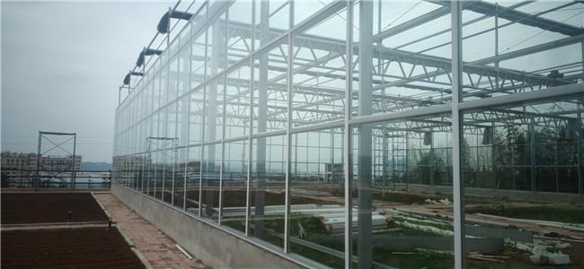 三门峡项目-玻璃大棚