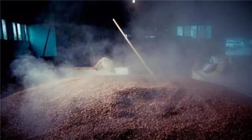 陕西坛装黄酒酿酒要做好窖池发酵温度管控曲线!