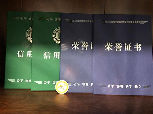 中舜工程荣誉证书