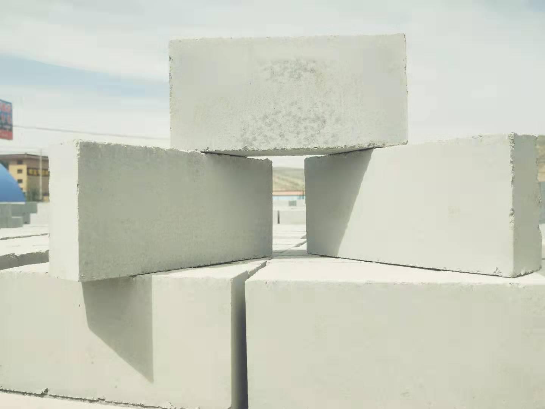 会宁生产粉煤灰小标砖