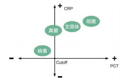 新三大常規(血常規、CRP、IL-6)在兒科的臨床應用
