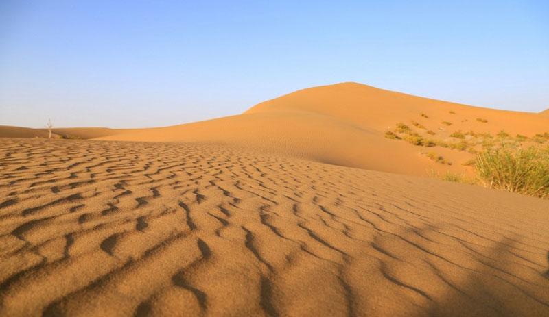 银川沙漠团建