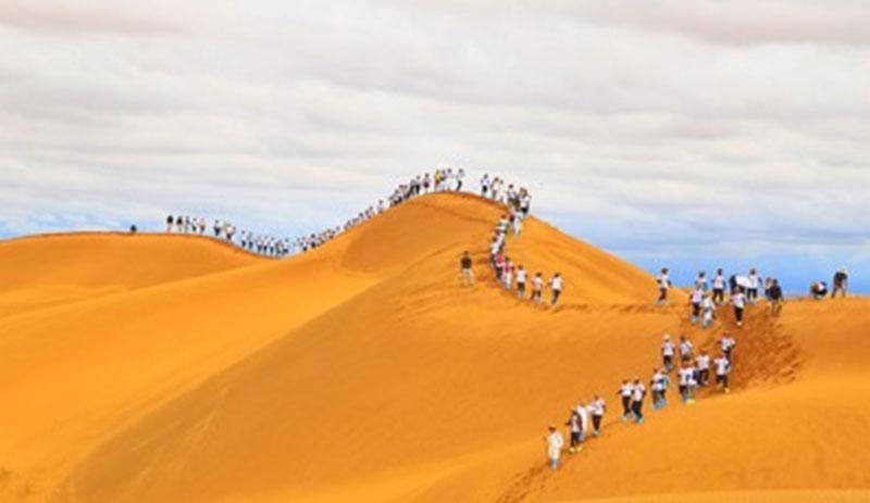 兄弟营沙漠团建