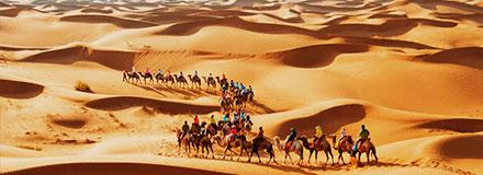 户外沙漠拓展训练哪家培训公司好?