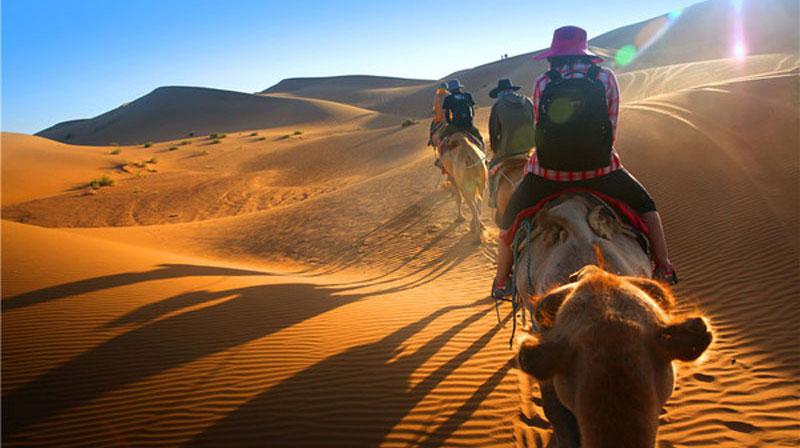 沙漠高峰体验营—沙漠掘金