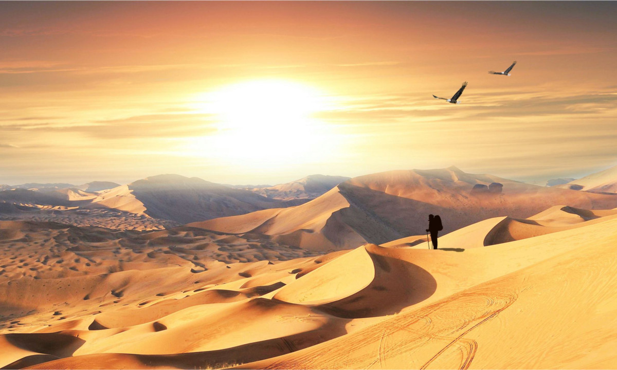 寻迹腾格里沙漠