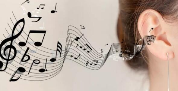 兰州音乐艺考生在集训中应注意些啥?