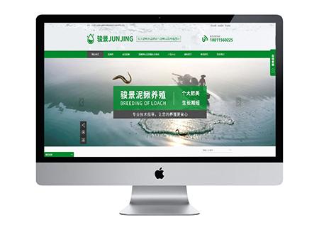 seo网络推广