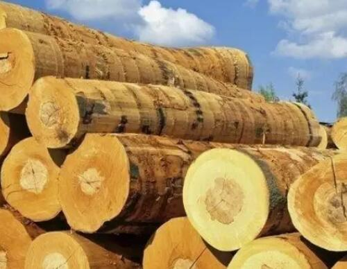 兰州木材加工厂
