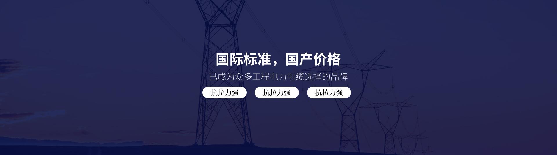 陕西电力电缆