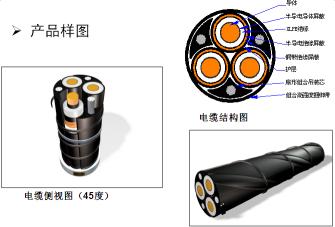 陕西特种电缆