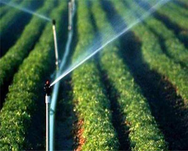 现代农业创丰收,川雨节水助新高