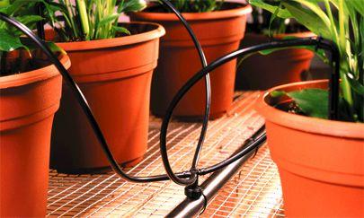 """智能温室监测系统让温室种植管理更具""""智总"""""""