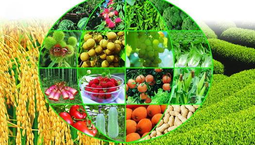 智慧农业的改变
