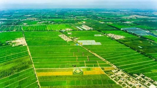 智慧农业:如何做好现代农业园区运营?
