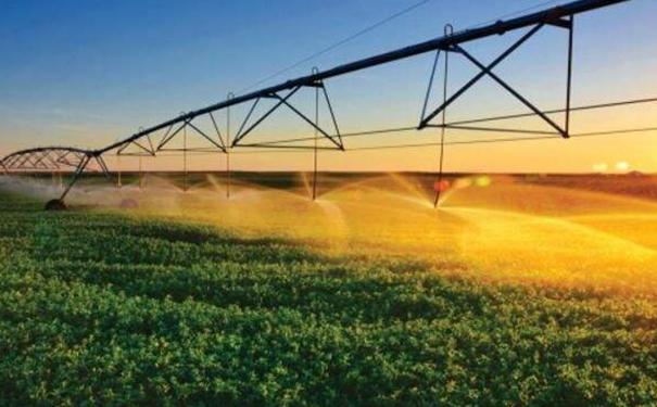 【农业科技】智慧农业会成为乡村振兴的利器吗?
