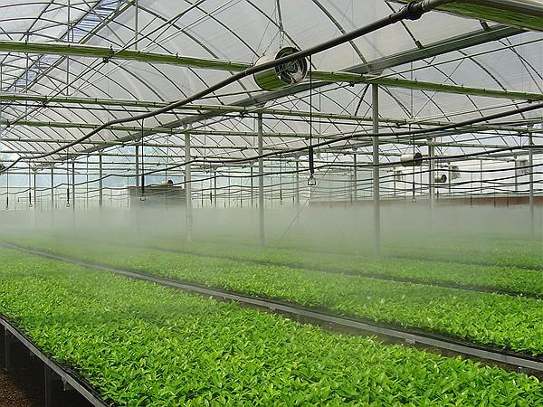 细数农田水利工程的四项节水灌溉技术