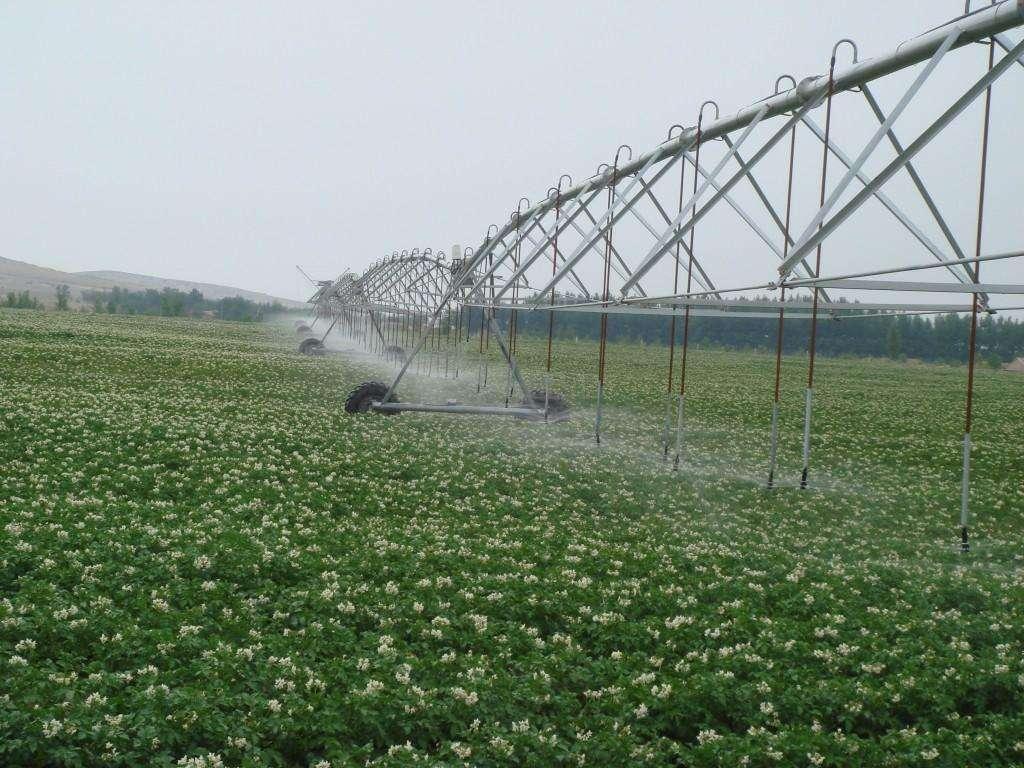 节水灌溉如何铺设滴灌带,滴灌设备注意事项知多少