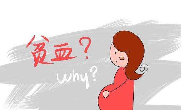 想怀孕时不贫血吗?跟着宝宝乐学会这3招,成为一个健康孕妈!