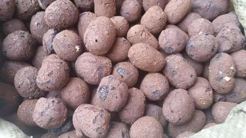甘肃建筑陶粒与花卉陶粒有什么不同?
