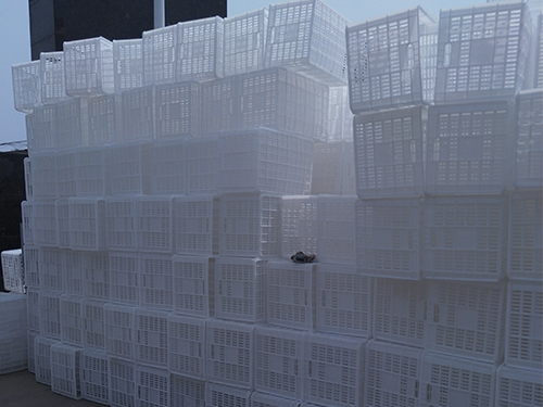 塑料垃圾桶销售公司厂区展示