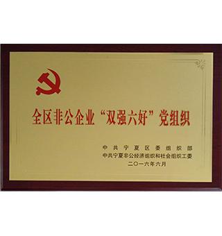 双强六好党组织