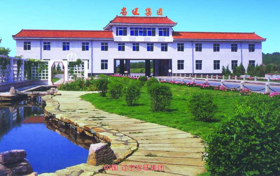 中国辽宁忠旺集团