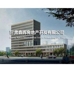 甘肃鑫晖房地产开发有限公司财务代理