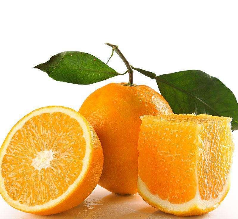 你知道哪些秭归脐橙的品种?每一种之间都有些不同之处