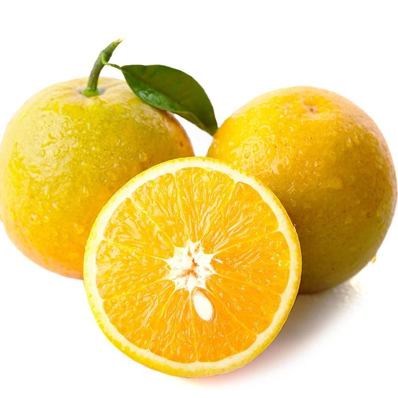 秭归脐橙费用
