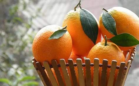 """作为脐橙品种的一员,伦晚深受人们的欢迎,想要选购优质的脐橙,这些""""坑""""要避免"""