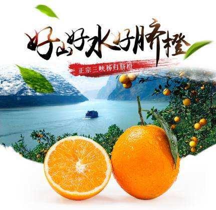 秭归脐橙代办_宜昌荣升农业