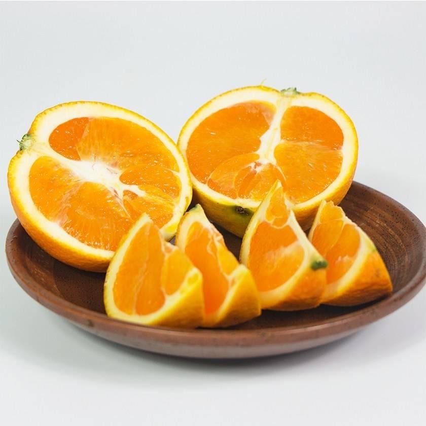 宜昌秭归脐橙销售_脐橙价格
