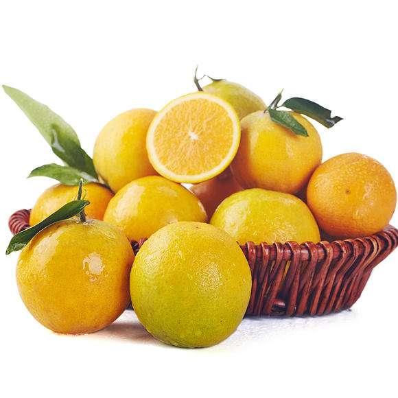 七月夏橙批发_宜昌秭归脐橙批发
