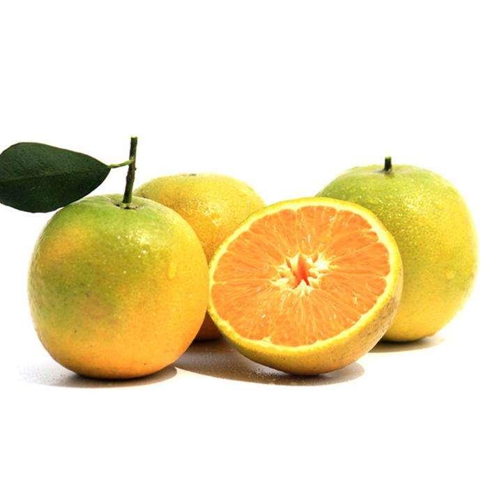 秭归脐橙代办