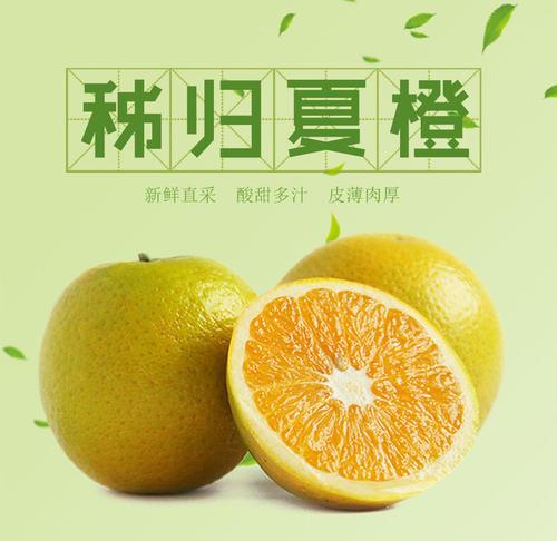 秭归脐橙夏橙销售厂家
