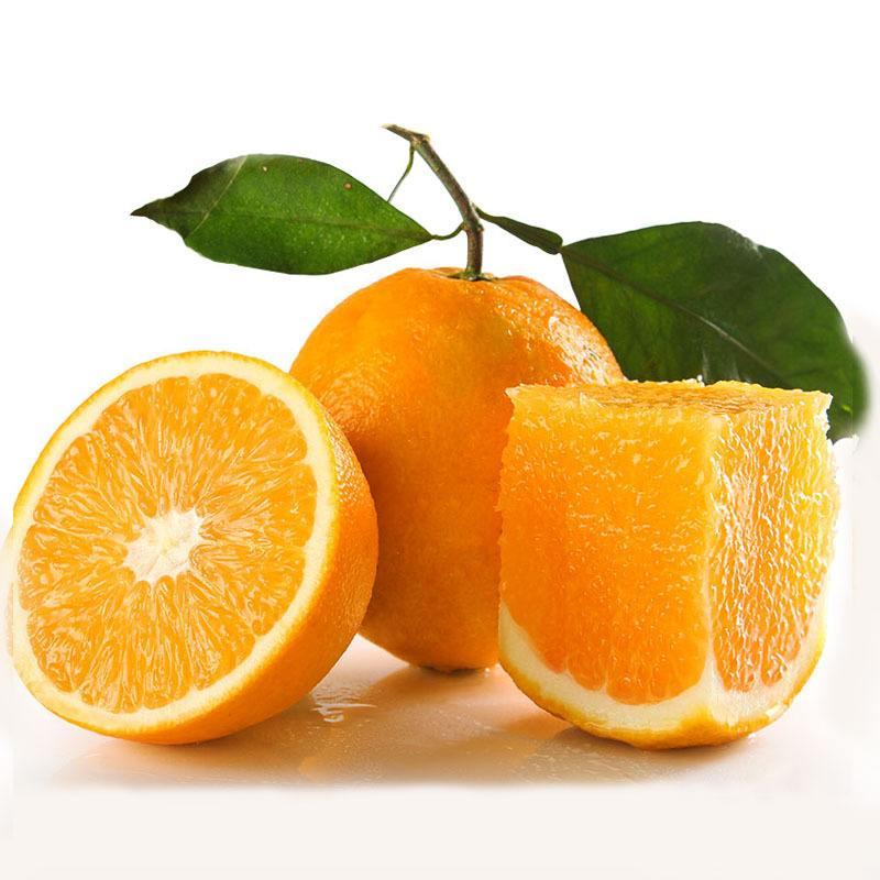 正宗宜昌秭归脐橙销售批发