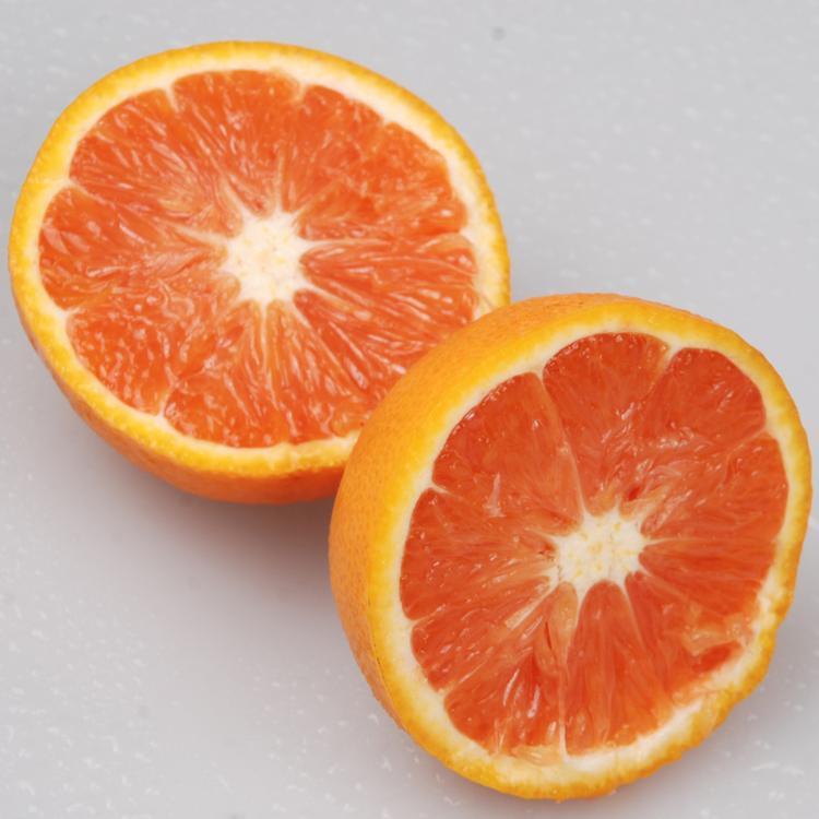 湖北三峡特产秭归脐橙批发代发
