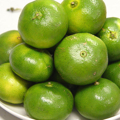 你吃过苦橘子吗?为什么宜昌秭归蜜桔会发苦呢?原因主要有这几个