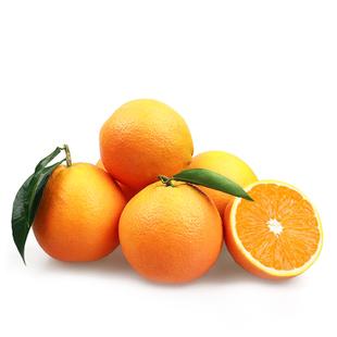 秭归脐橙价格优惠皮薄肉甜