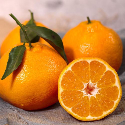冬季温度的变化并没有阻挡新鲜应季水果的上市,这些水果比较适合冬季食用