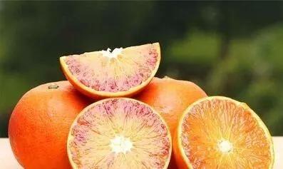 多样化的秭归脐橙四季批发