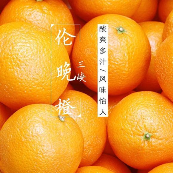 2021年的伦晚脐橙已经上市,除了它,你还知道哪些宜昌秭归脐橙的品种