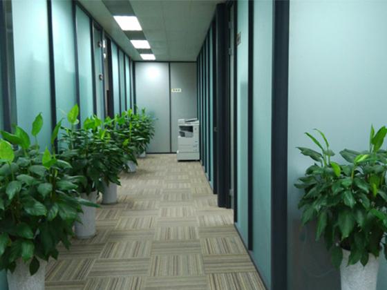 成都聚酯纤维吸音板生产厂家企业相册