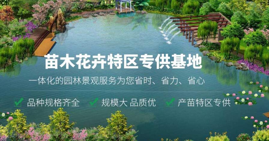 欣宝枫园林告诉您绿化园林的十项工作
